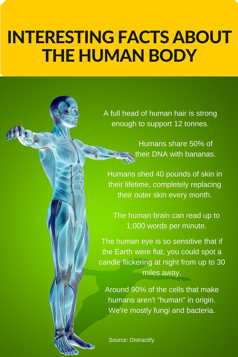 The Shocking Facts About The Human Body